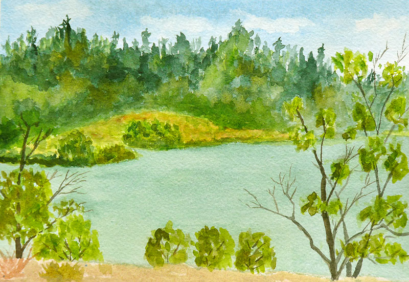 0453-PAN-MedicalLakePleinAir-Aug,09-WS