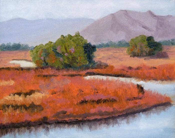 107-0447-WhitewaterDrawMarsh,AZ-Oct,12